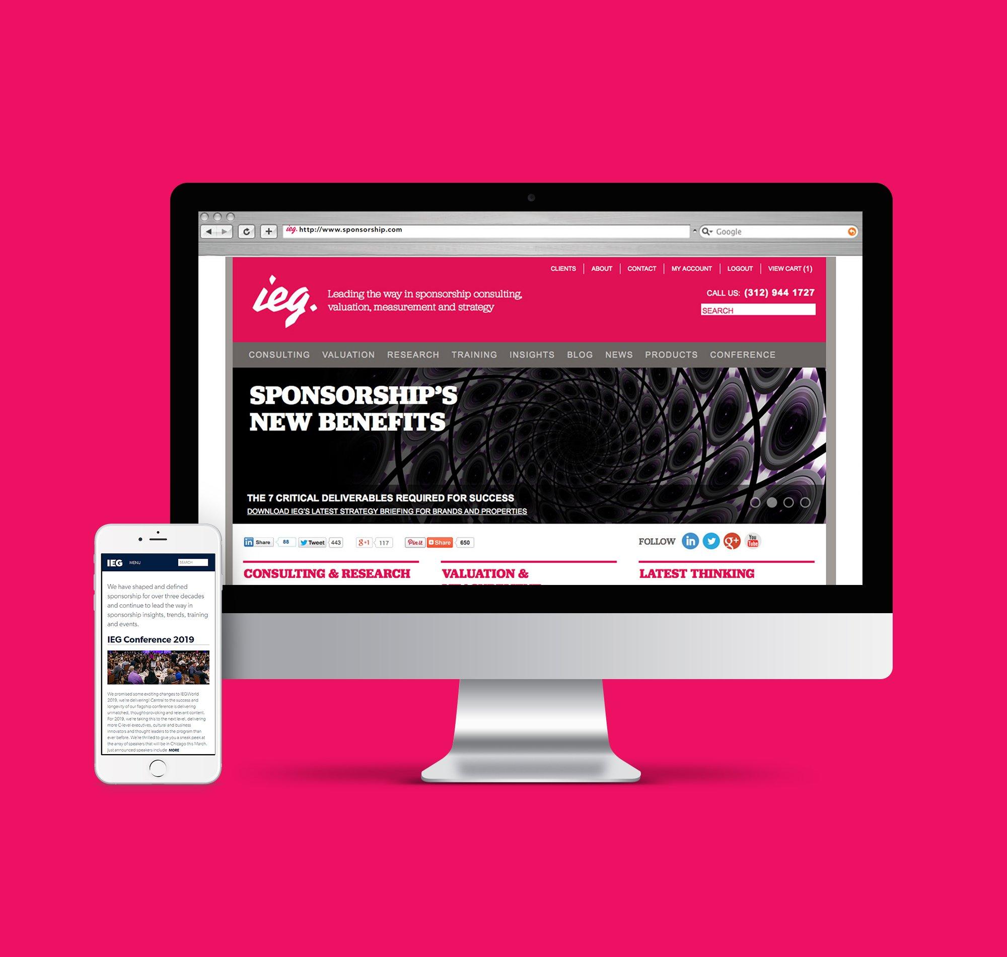 IEG Website